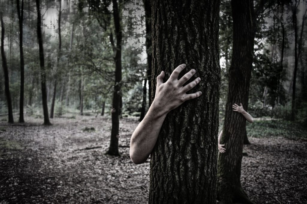 Zombie arms hugging trees in forest